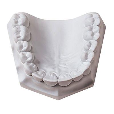 Orthodontic Plaster